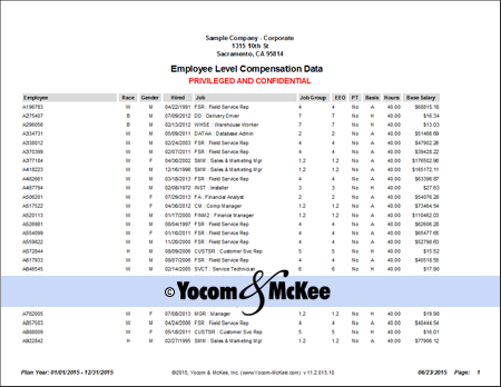Screenshot of the Employee Level Comp Data